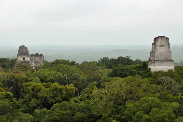 11:55 Tikal Sunset Tour in Small Group from Tikal Inn