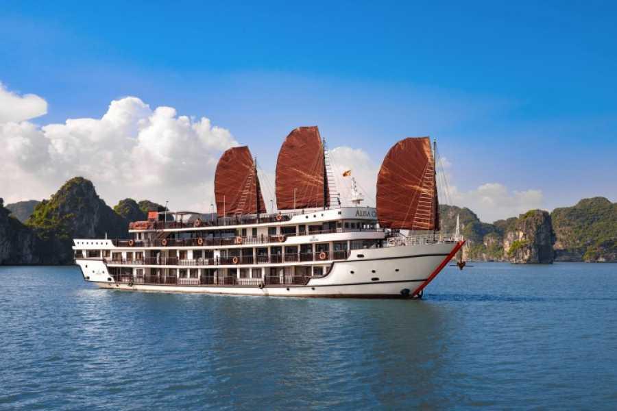 OCEAN TOURS ALISA 5* one night cruise
