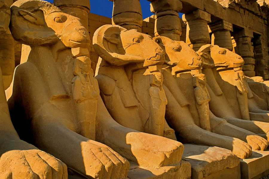 Marsa alam tours Overnight Trip to Luxor from Portghalib