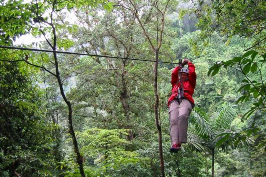 CongoCanopy.com Riu Guanacaste Original Canopy Zip Line Tour