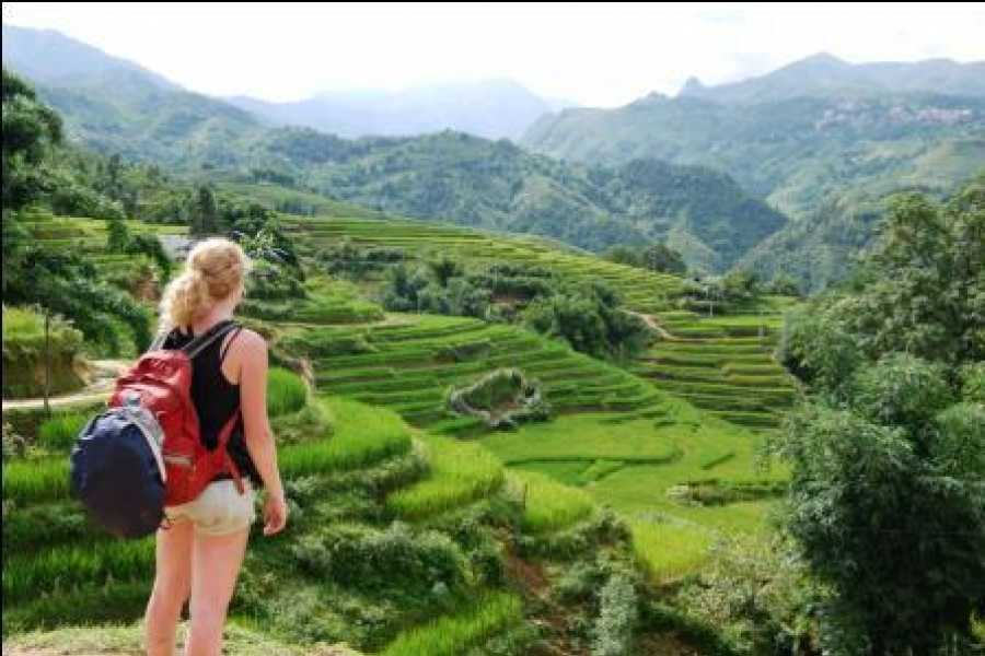 Friends Travel Vietnam Real Sapa Experience  1 Day trekking | Start  & End in Sapa