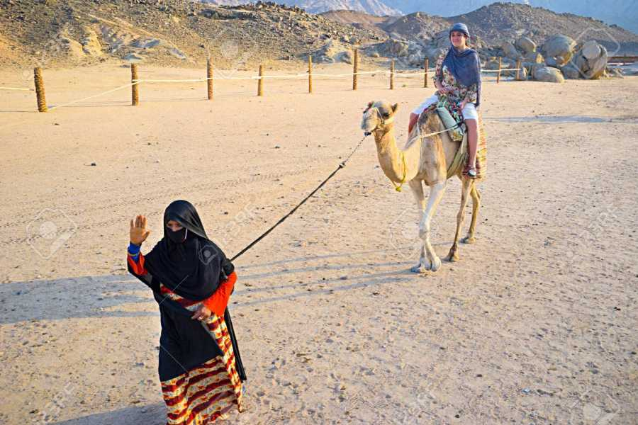 Excursies Egypte Camel riding day tour from Port Ghalib