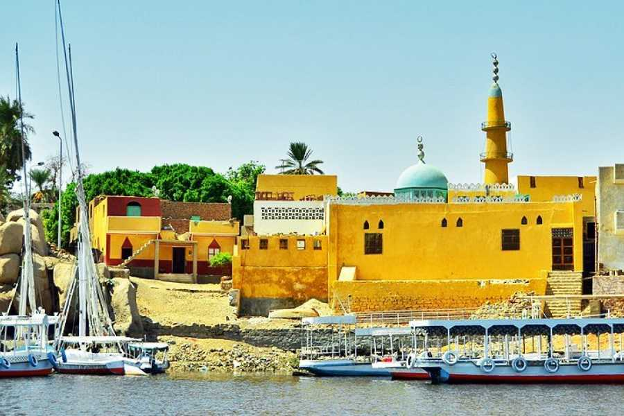 Excursies Egypte Aswan private day tour from Marsa Alam
