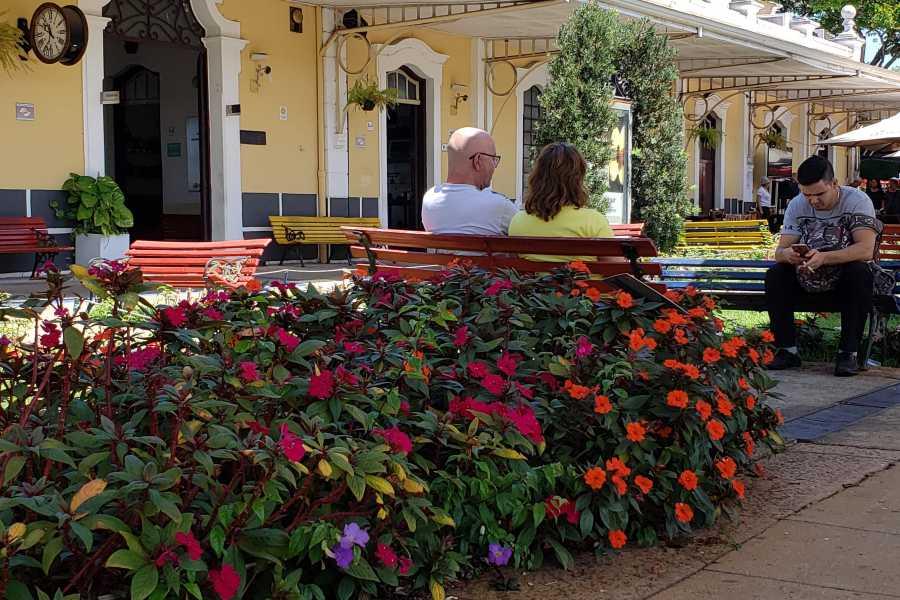 Check Point Holambra - Capital Nacional das Flores