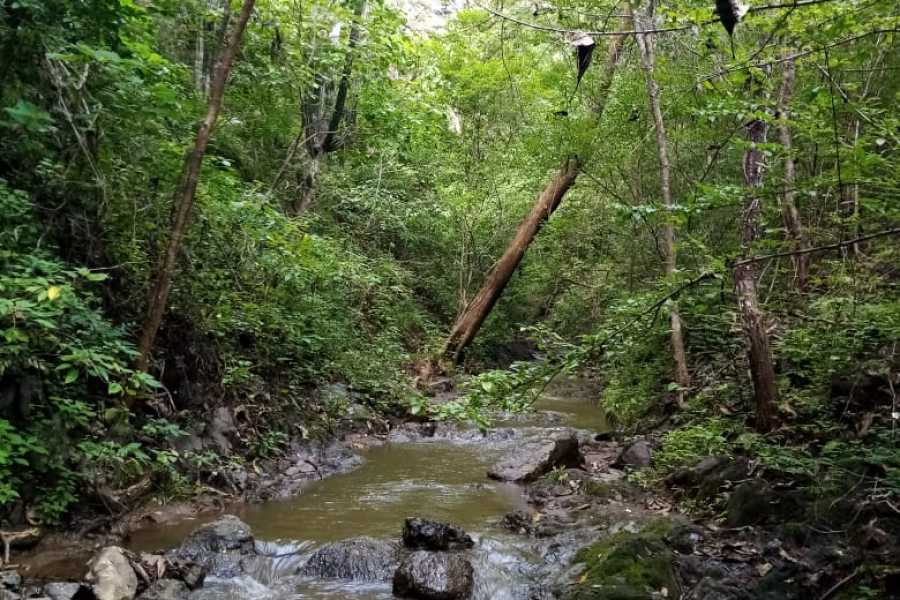 Tour Guanacaste Cartagena Chorro Waterfall hike
