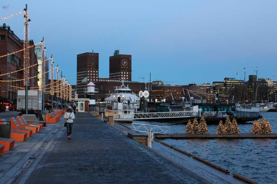 Viking Biking City Walk : Christmas in Oslo