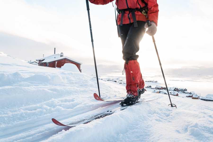 Øystein Ormåsen Skiing like a Norwegian