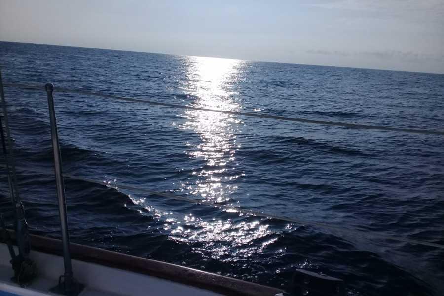 Tour Guanacaste Mariposa Sailing Sunset Tour