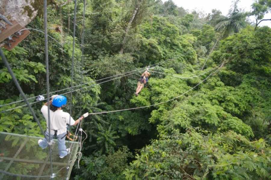 CongoCanopy.com RIU Guanacaste Discount Package