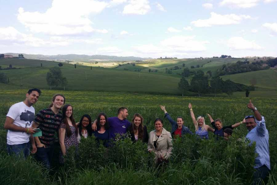 Italy on a Budget tours HALF DAY TUSCANY WINE TOUR  - WINE NOT !!!