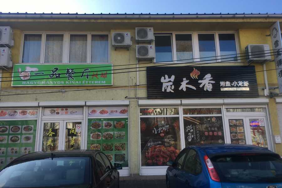 Living Local Hungary Visit in Budapest's Chinatown