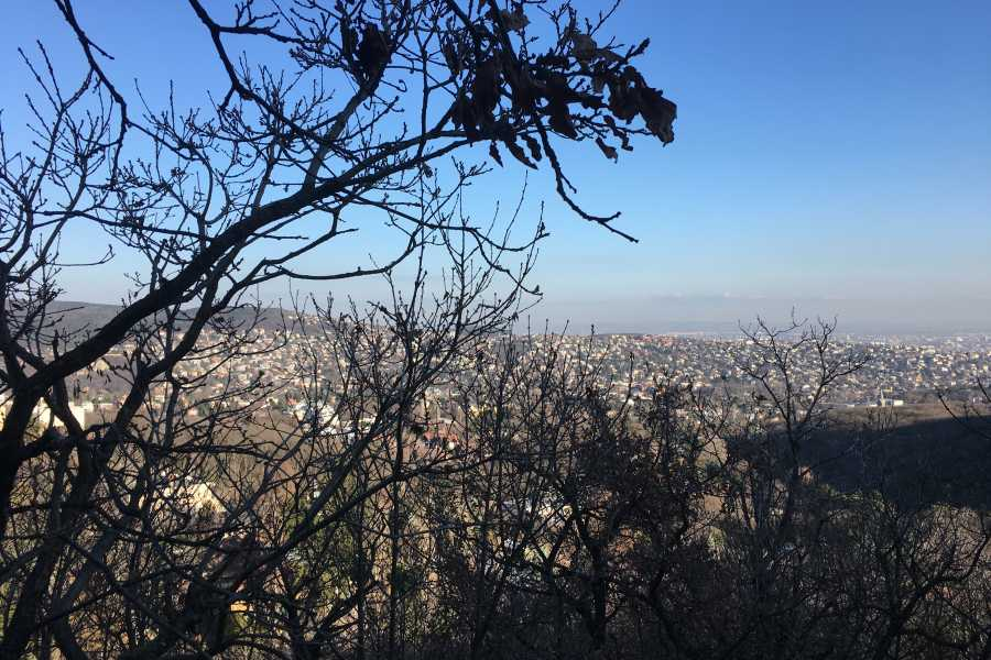 Living Local Hungary Hiking in the forrest & view over Budapest