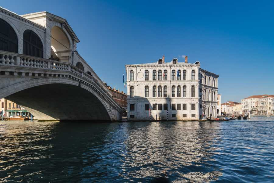 Venice Tours srl Save Venice: walking tour of Venice High Tide