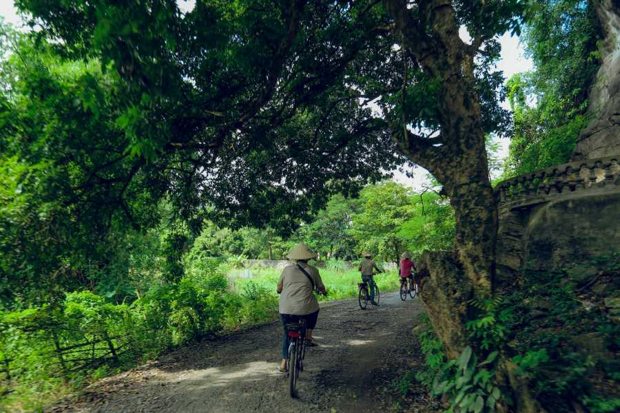 Friends Travel Vietnam Ninh Binh Day Tour with Electric Bike | Small Group ( Start & End in Ninh Binh)