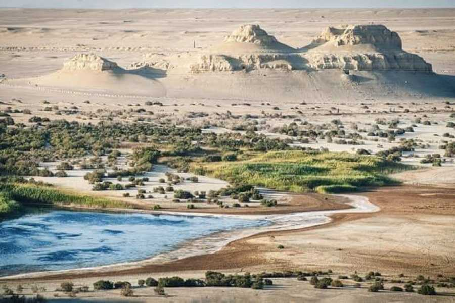 Marsa alam tours 3 days trip to wadi El Hitan and Fayoum oasis from Cairo
