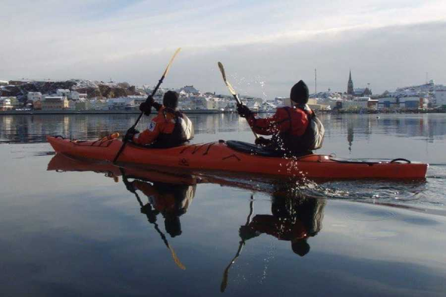 Outdoor West Winter kayaking: SEAL SAFARI