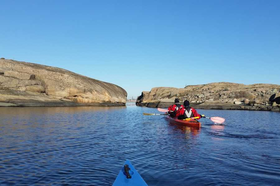Outdoor West Vinterpaddling: Sälsafari i kajak