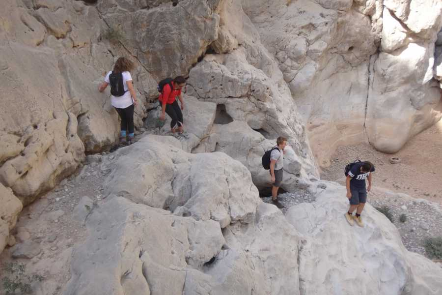 Adventurati Outdoor Obstacle Challenge Hike - UAE