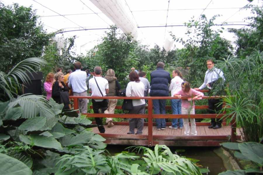 Cervia Turismo House of Butterflies and Insects - Guided Tour