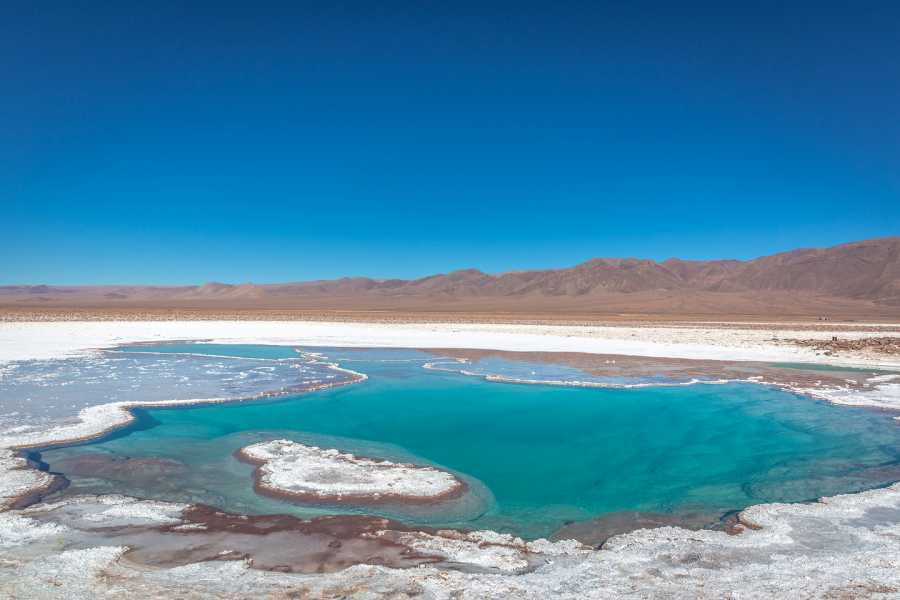 Uyuni Expeditions LAGUNA CEJAR HALF DAY