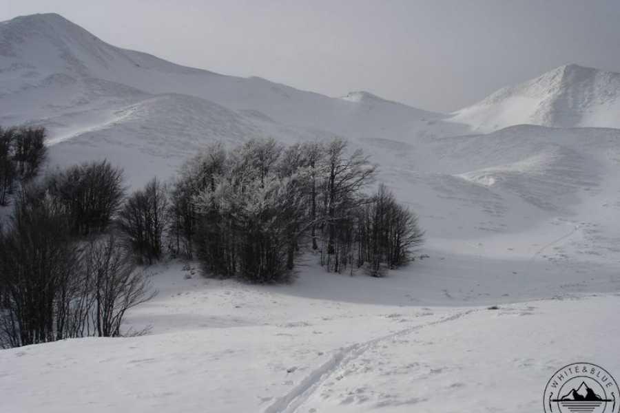 Skiforum SCI ALPINISMO VAL SARENTINO - CIMA GIOGOBELLO 2308m (min.4 partecipati)