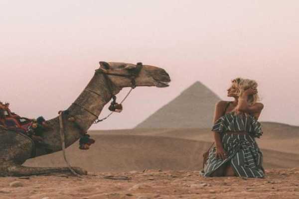 4-Day Tour: Cairo, Luxor, Alexandria, Sound and Light Show, Dinner cruise