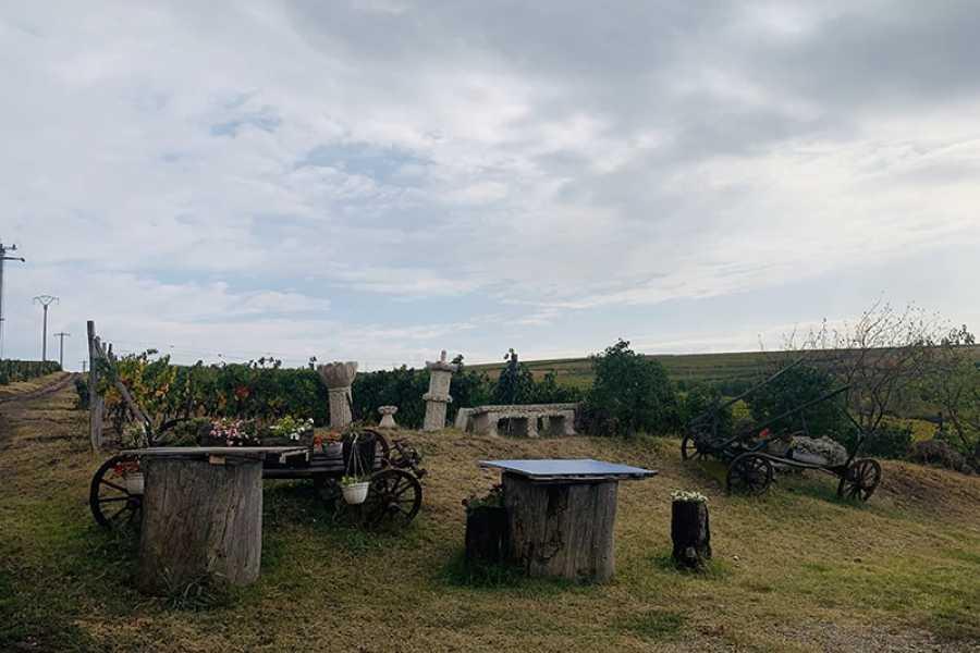 TravelMaker Wines of Wallachia – 8 hours