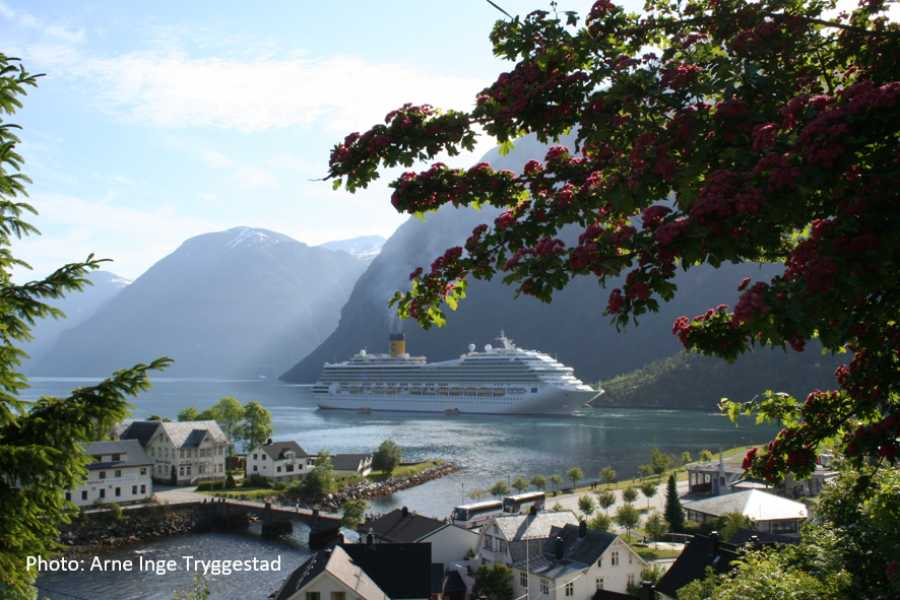 Travel like the locals (Møre og Romsdal) Stryn - Ålesund (en veg)
