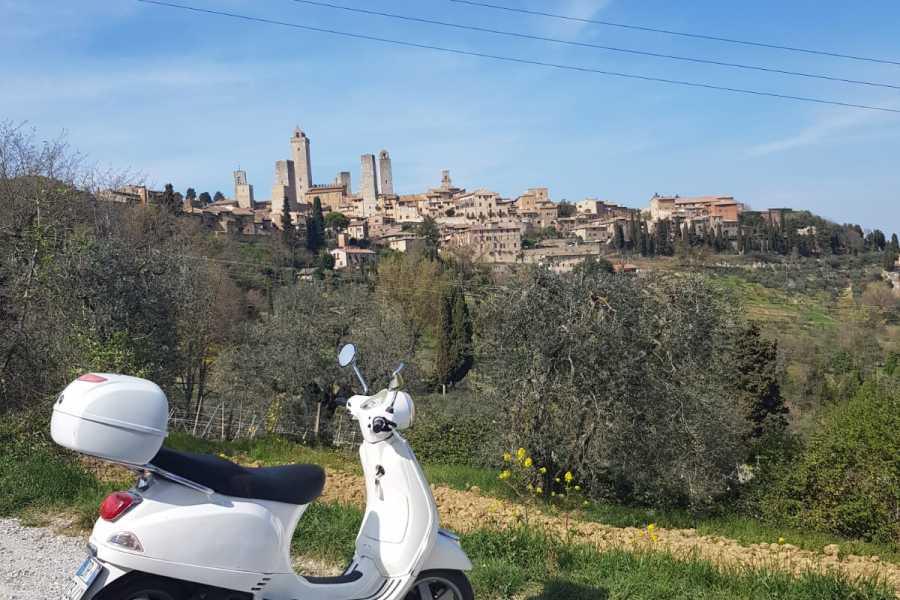 Italy on a Budget tours TOUR IN VESPA NEL CHIANTI DA SAN GIMIGNANO