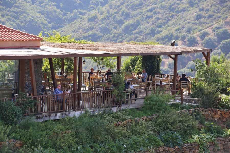 Destination Platanias BOTANICAL GARDENS & CRETA EVENING
