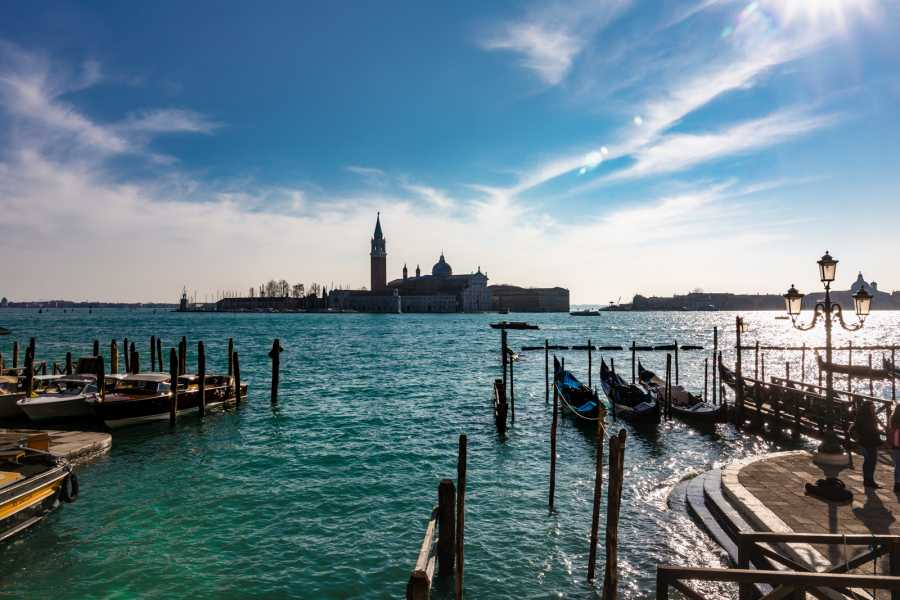 Venice Tours srl Piazza San Marco Top Ten Highlights