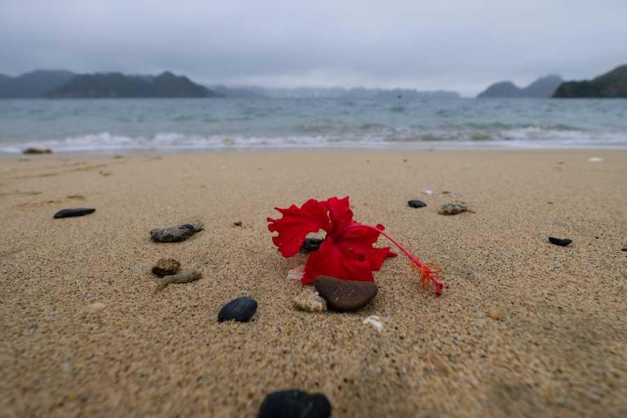 OCEAN TOURS CROISIERE AVENTURE 2J1N