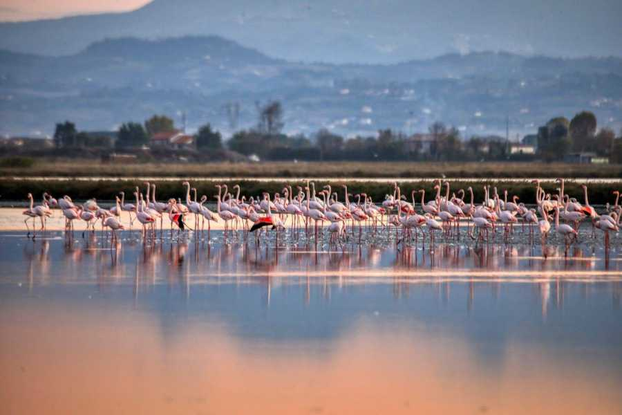 Cervia Turismo Walk in Salt Pan
