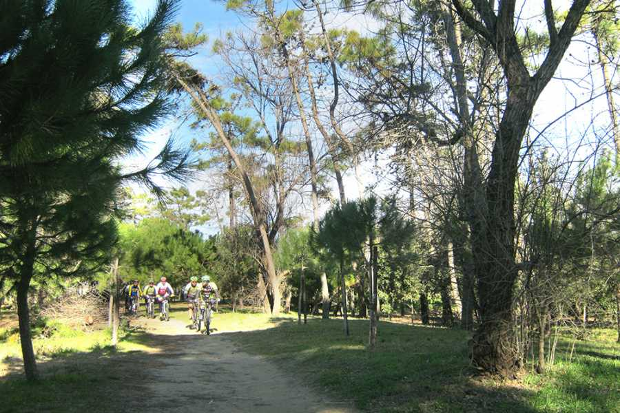 Cervia Turismo Cervia Verde - Cicloturismo
