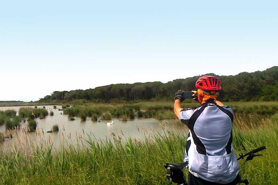 Cervia Turismo Cervia Verde - Bike Tourism