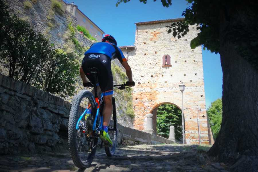 Cervia Turismo Romagna Bike Tour: from Fortress to Fortress of sea and land - Individual Tours