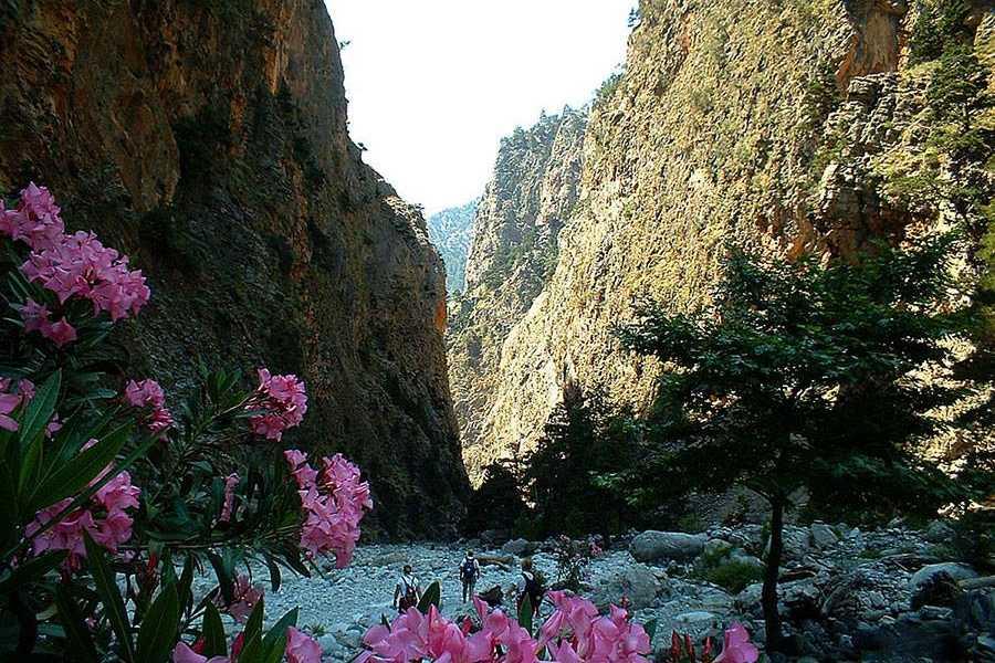 Destination Platanias Samarian rotko - lyhyt vaellus - 35 EUR