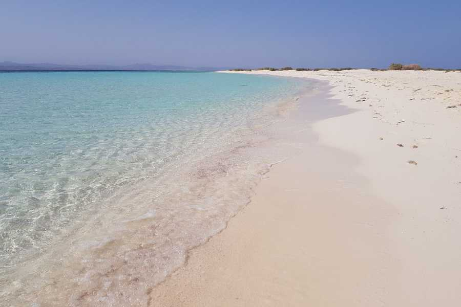 Marsa alam tours 2 Days Scuba Diving Course Excursions From El Quseir