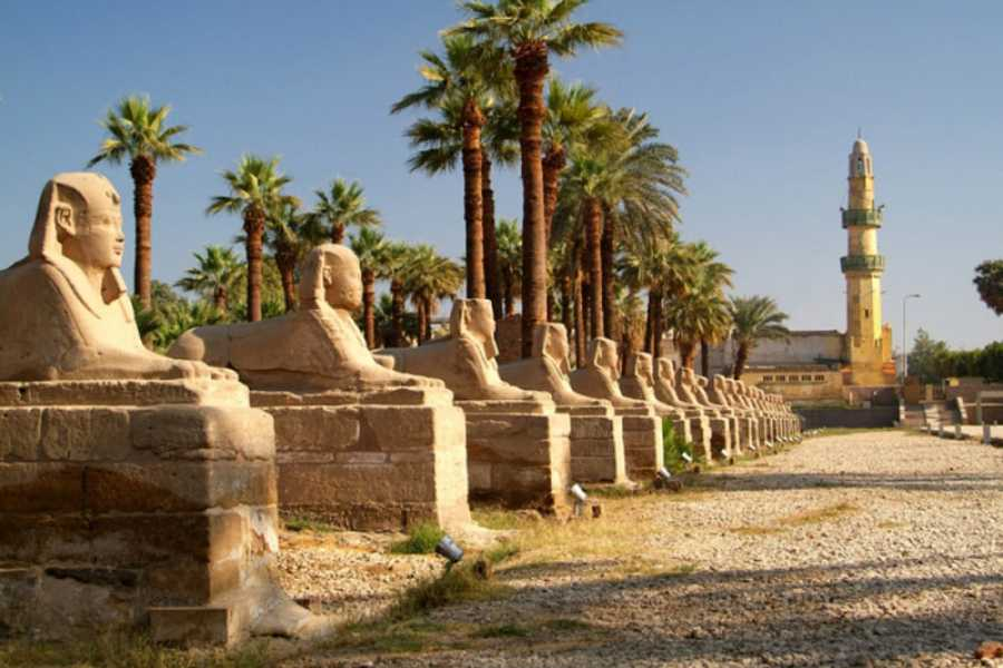 Marsa alam tours Day tour to Luxor from El Quseir