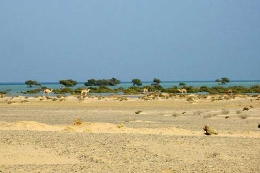 Marsa alam tours Shalateen Tour from El Quseir