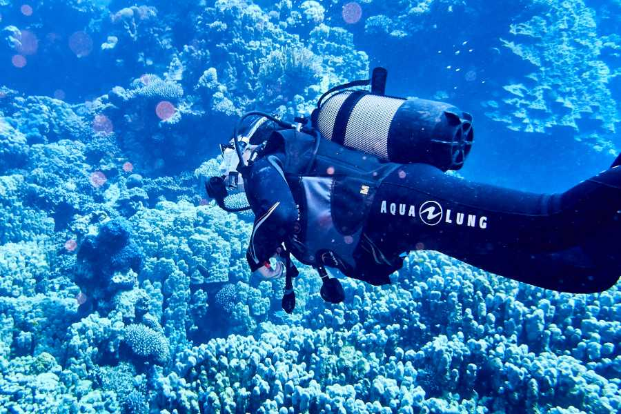 Marsa alam tours Padi Scuba Diving In El Quseir