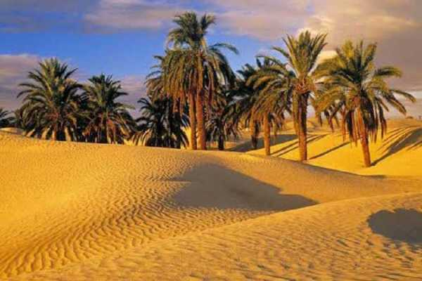 3 day trip to Cairo, fayoum and Luxor from Hurghada