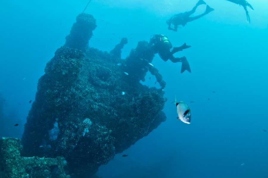 "VisitRimini Dive to the wreck ""Paguro"""