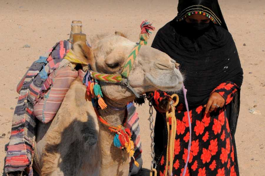 Deluxe Travel Bedouin Desert Safari at Hurghada by Jeep 4x4