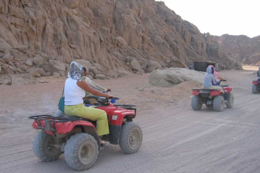Deluxe Travel Quad Biking Safari in the Sinai Desert