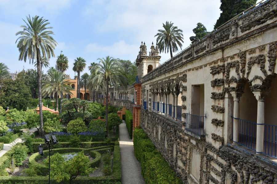 NHUE Séville: visite guidée coupe-file au Real Alcazar et à la cathédrale.