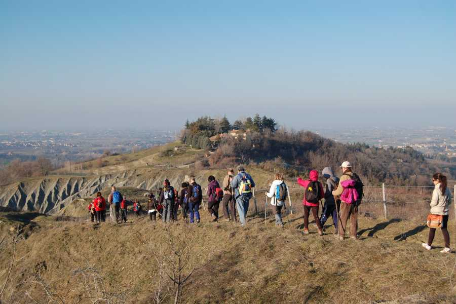 Bologna Welcome Orchis way - meraviglie esotiche al Parco La Martina