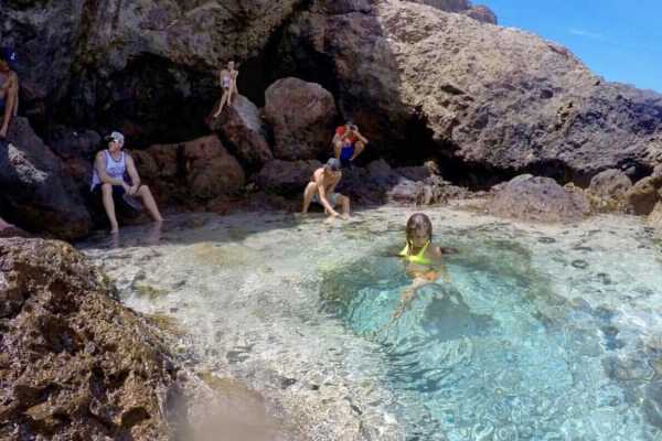 'The secrets of Aruba' Safari