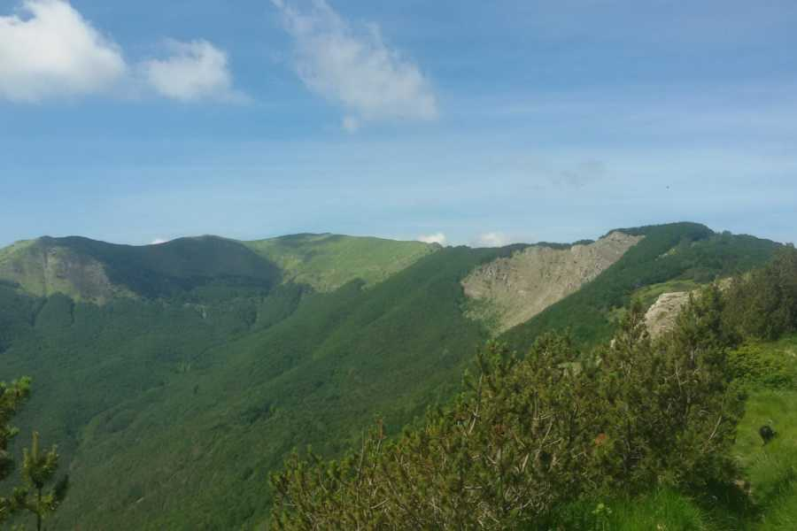 Modenatur Una cima due passi tre valli