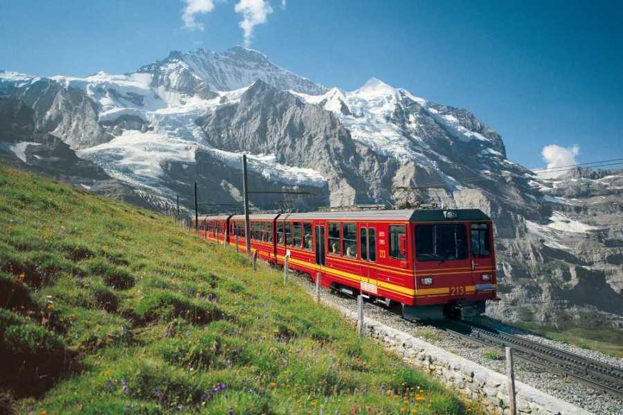 Best of Switzerland Tours 少女峰- 欧洲屋脊(因特拉肯出发)